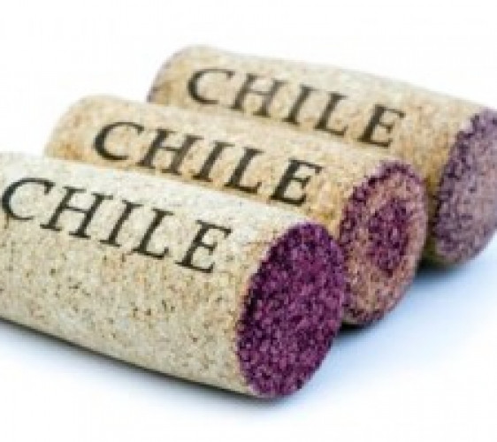 BOTTLE TALK: Discover or re-discover Chilean wine