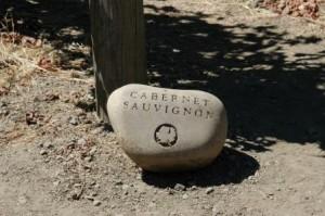 Caberent Sauvignon Stone Marker