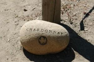 Chardonnay Stone Marker